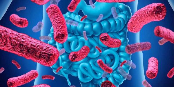 Mikrobiom – największy przyjaciel (lub wróg) człowieka