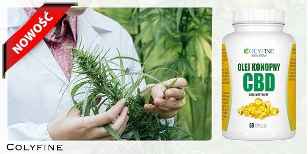 Nasz nowy produkt i HIT, czyli olej konopny CBD